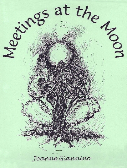 Meetings at the Moon curriculum